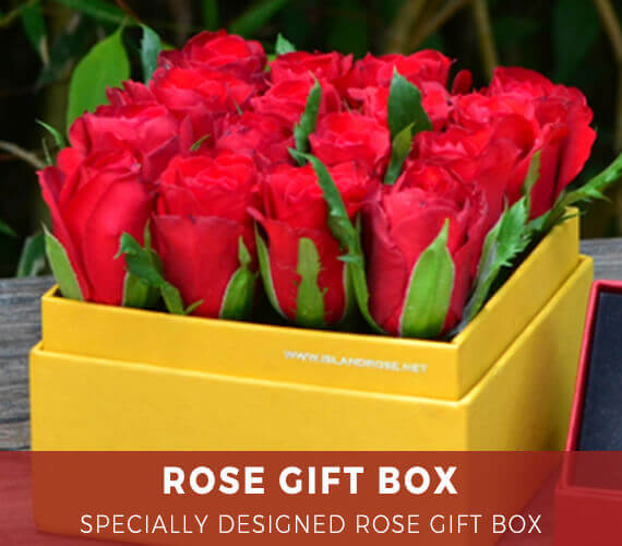 Send Farm Fresh Flowers High Quality Gifts To The Philippines