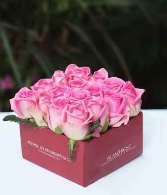 Box of Deep Pink Roses & Rose Gift Box: Buy Roses Aboutintivar.Com