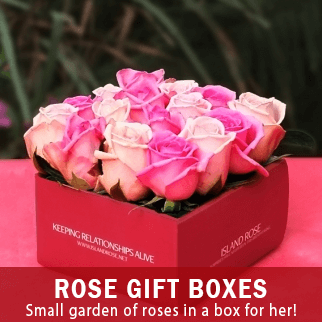 gift-shop-send-flowers-to-the-philippines