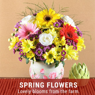 spring-flowers-send-flowers-to-the-philippines