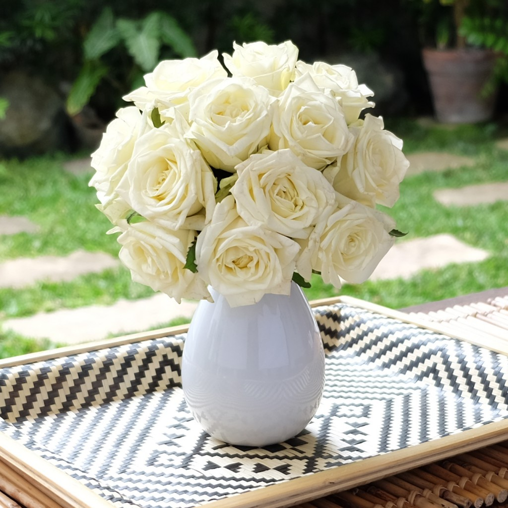 White Naomi Roses Growing Together