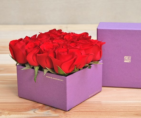 Flower In A Box: Love In Violet