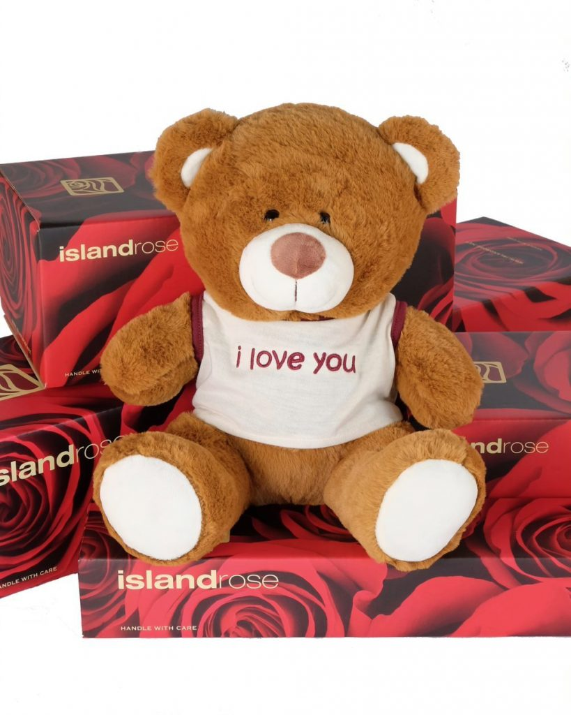 Brown Messenger Teddy Bear From Island Rose