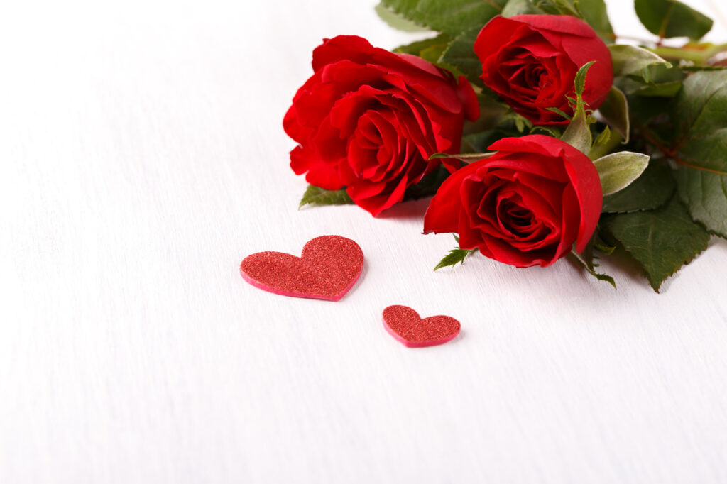 Red roses symbolizing love