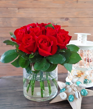 Red Celebration: Flowers That Exude The Classic Holiday Color