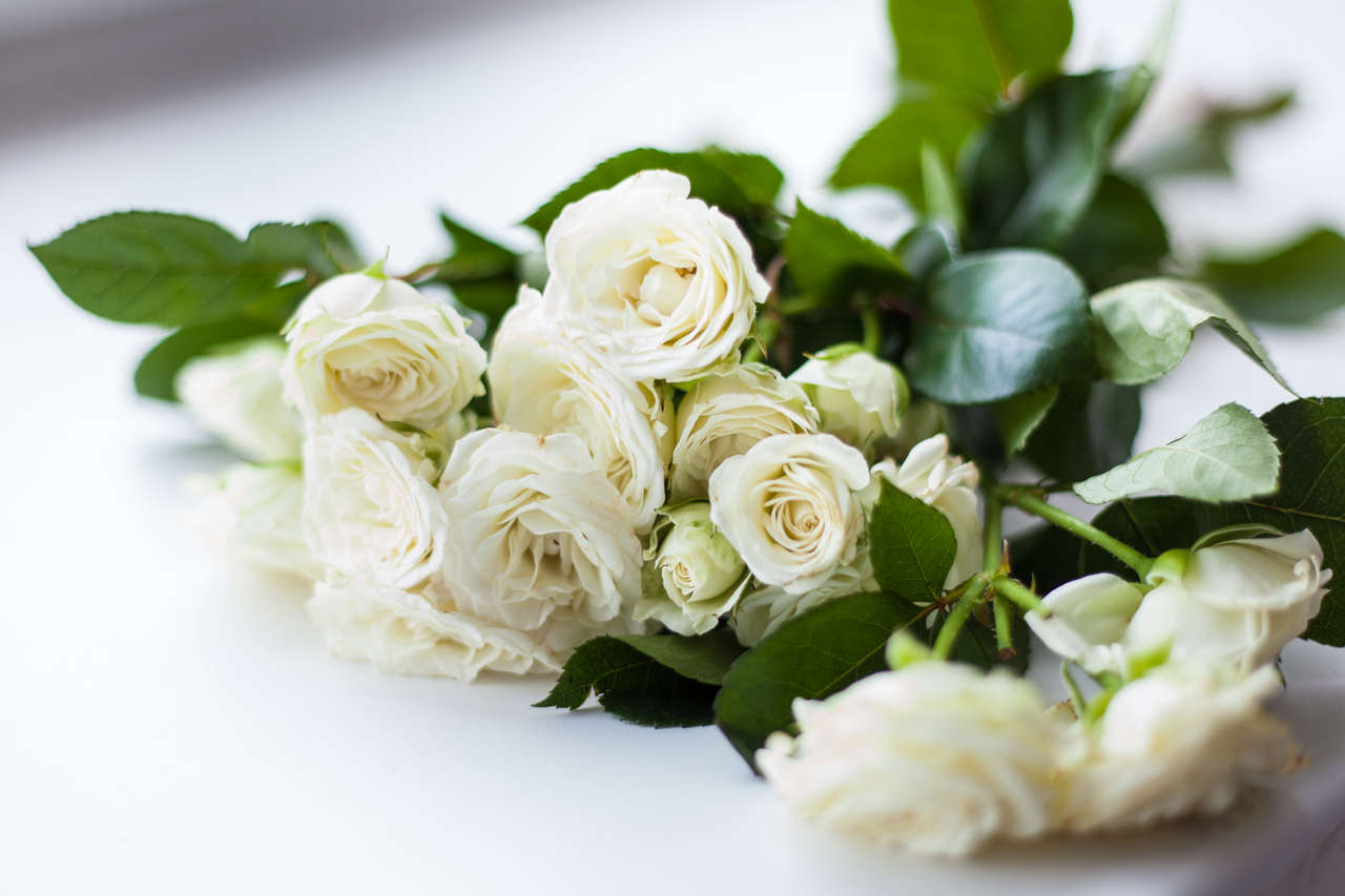 Send The Deepest Condolences With These 4 Funeral Flowers In the Philippines